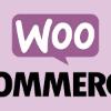 WooCommerce - geen betaalmethoden beschikbaar